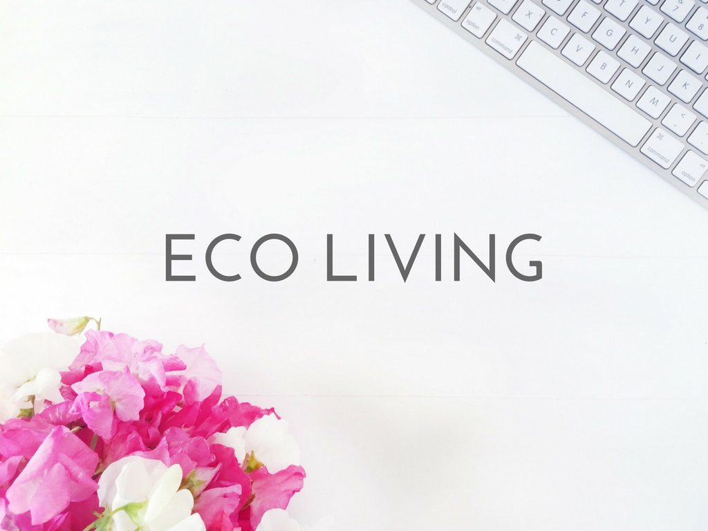 ECO LIVING logo