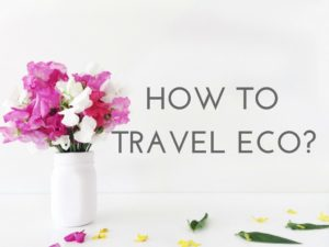 HOW TO TRAVEL ECO logo
