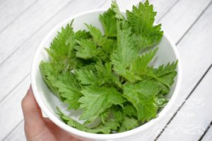 Nettle smoothie