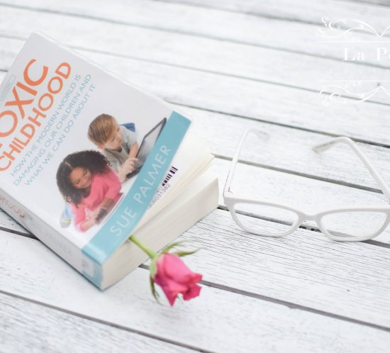 Book Review | Toxic Childhood By Sue Palmer 4