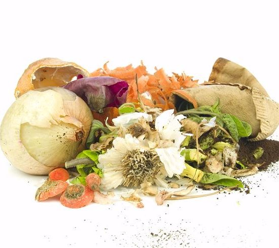 Eco Kitchen | How to Reduce Food Waste in the Kitchen? 1