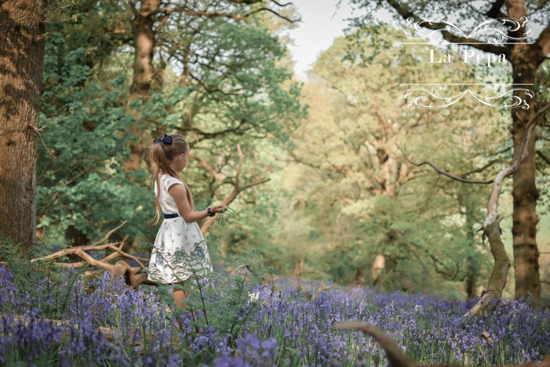 Wild Walks | Forest Bathing In the Sea of Bluebells 7
