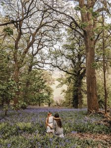 Wild Walks | Forest Bathing In the Sea of Bluebells 8