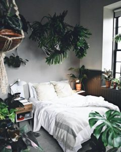 Green Living | The Joy of Plants - Creating Urban Jungle at Home 1
