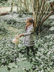 Eco Kitchen | Foraging Wild Garlic and Recipe ideas 1