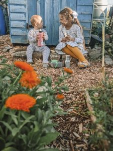 Green Living | My First Year on The Allotment 59