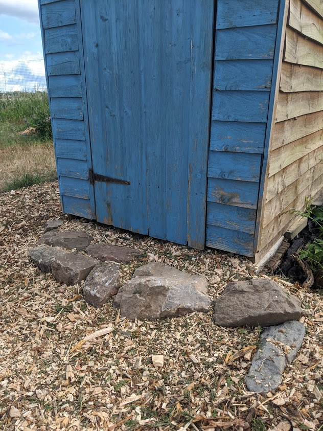 Green Living | My First Year on The Allotment 23
