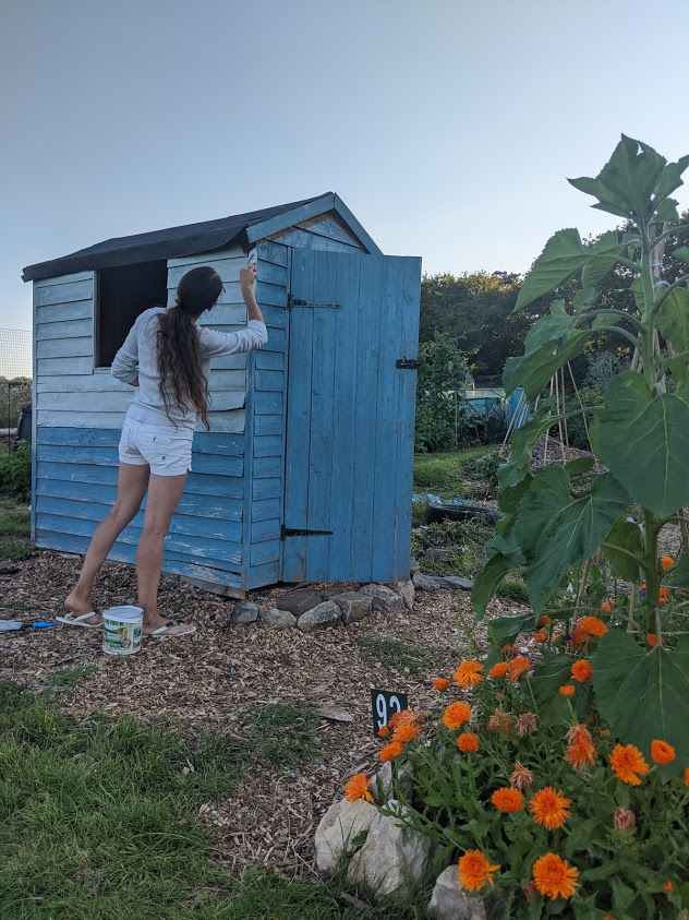 Green Living | My First Year on The Allotment 29